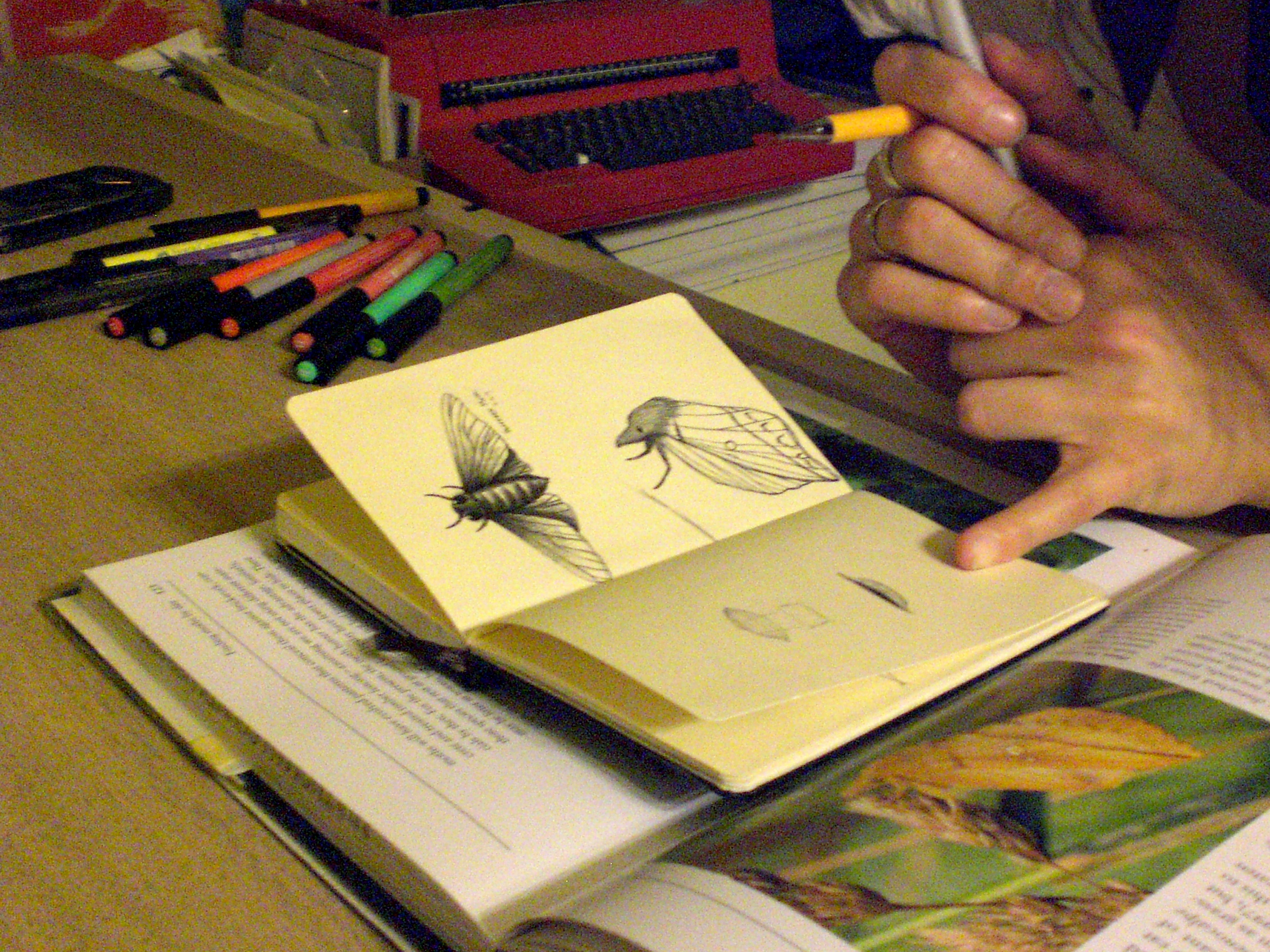 Christina Lafontaine drawing some moths at the IPRC in 2009