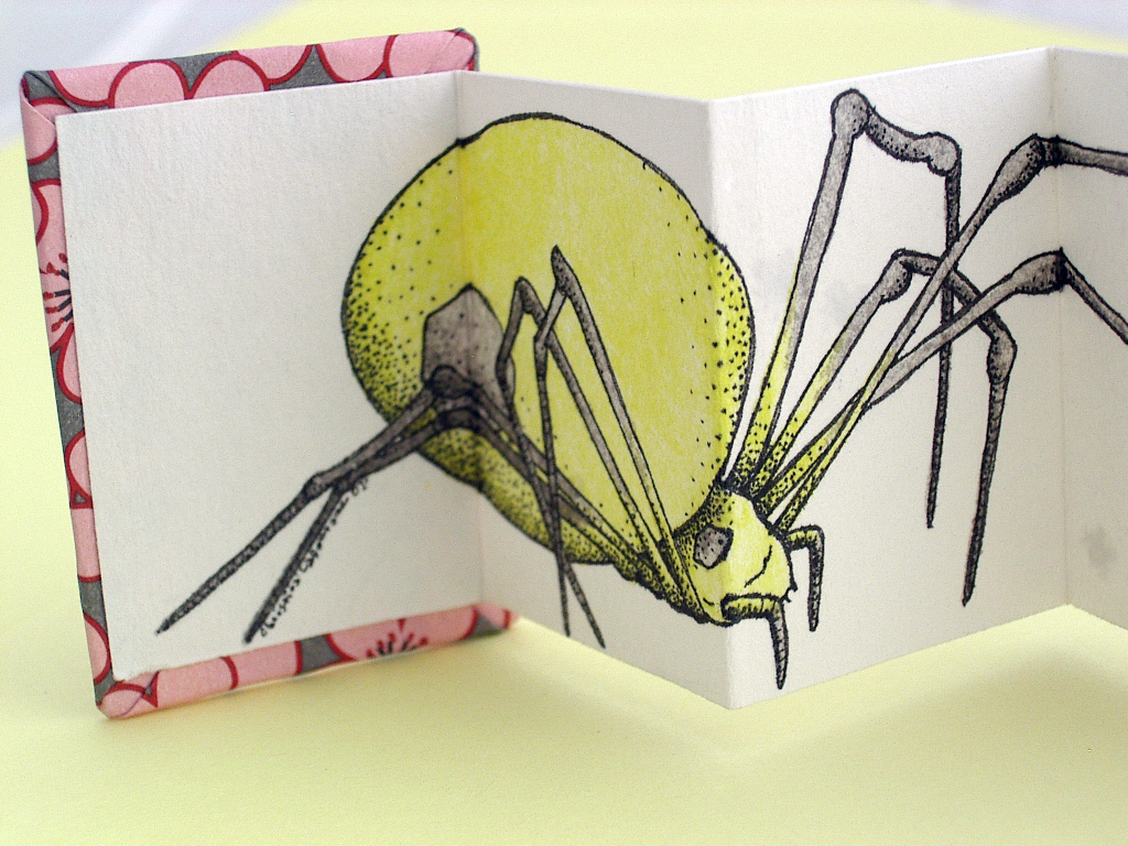 Spider Miniature Accordion Book made by Ruth Bleakley and Christina Lafontaine | You can see the detail really well here - Christina did all the shading in dots rather than crosshatching - very meticulous!