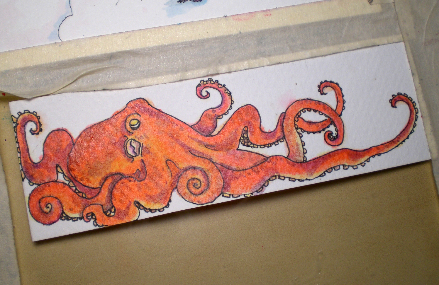 Octopus Drawing Sequence In The Studio With Ruth Bleakley