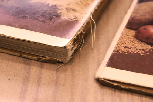 Step by Step photos of a Cookbook Repair by Ruth Bleakley -  completely missing damaged spine