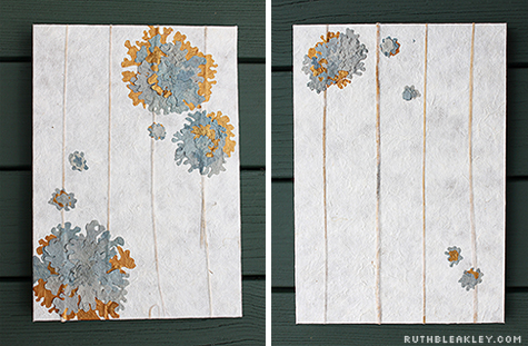 front and back of lichen book by Ruth Bleakley and Chelsea Clarke