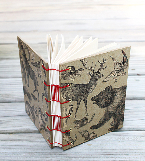 National parks animals themed travel journal by Ruth Bleakley