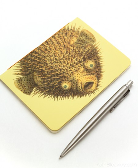 Pufferfish Notebook handmade by Ruth Bleakley