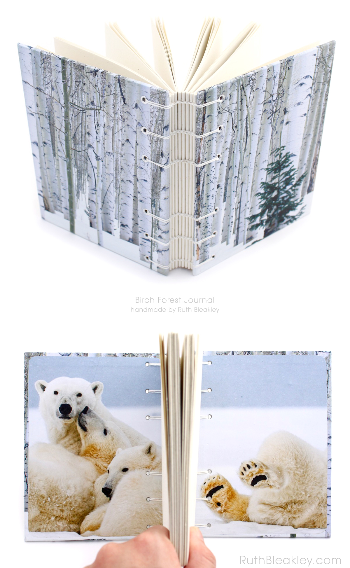 Birch Forest Journal handmade by bookbinder Ruth Bleakley