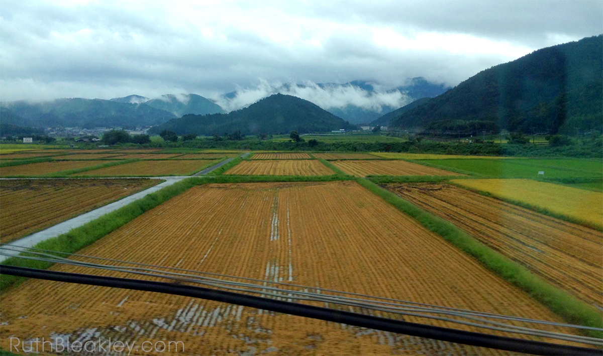 Japanese Countryside from the bullet train to Kyoto - book artist Ruth Bleakley travels to Japan