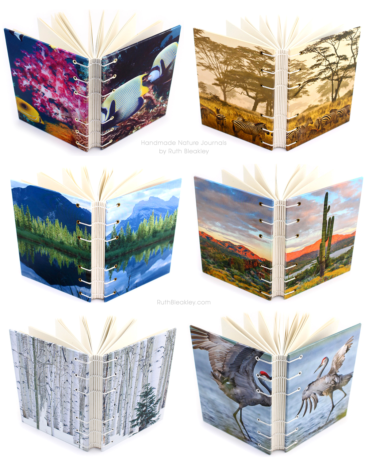Nature Journals handmade by Ruth Bleakley that lay flat when open