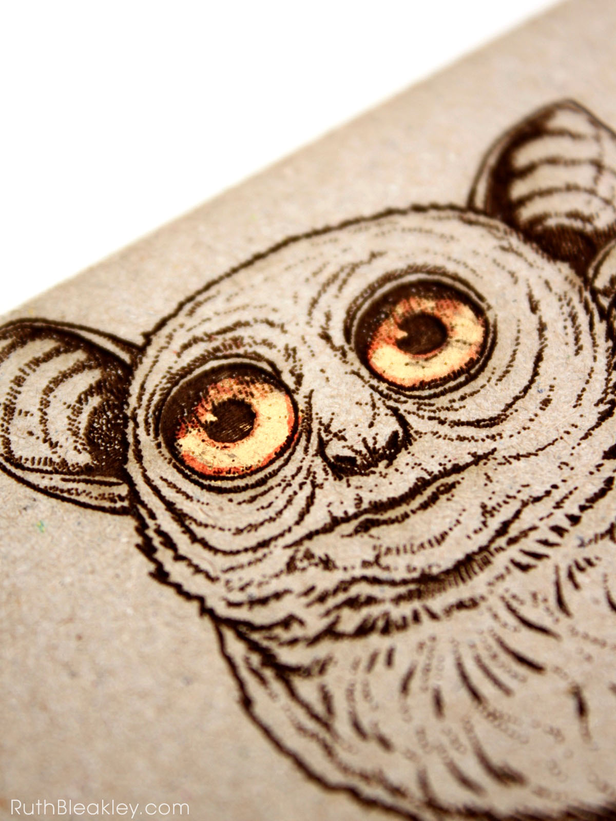Koboldmaki laser engraved journal handmade by book artist Ruth Bleakley - closeup of the golden eyes