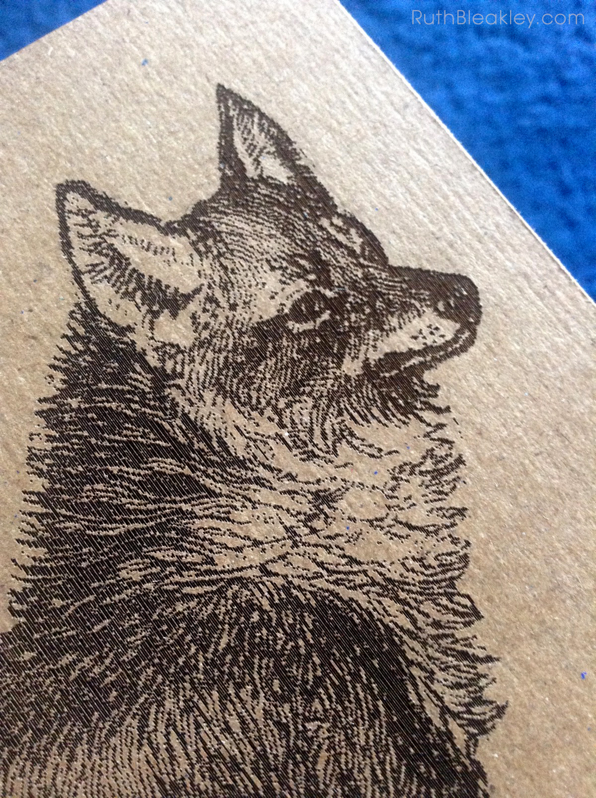 Coyote Journal handmade by Ruth Bleakley - 3
