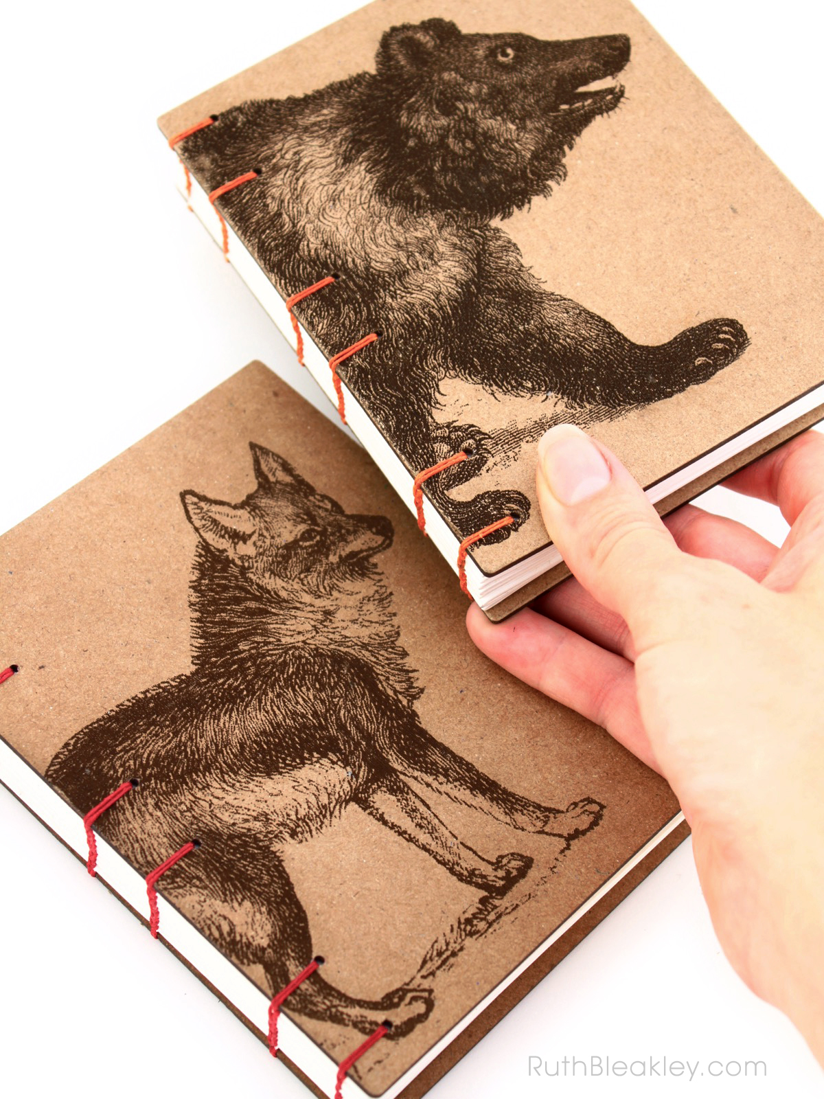 Coyote and Bear Journals handmade by American book artist Ruth Bleakley - 2